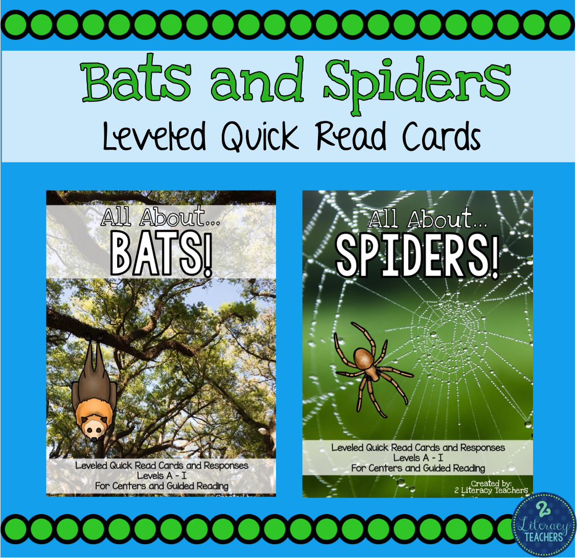 Bats and Spiders!!