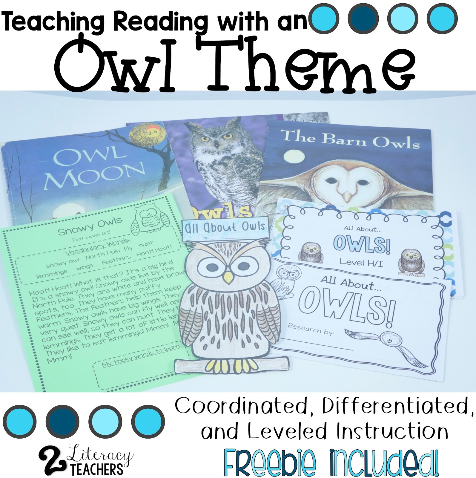 Teaching Reading with a Owl Theme- Differentiated, Leveled Instruction with a FREEBIE!